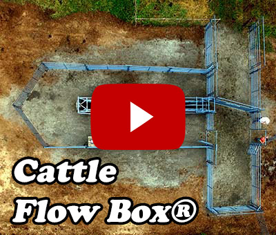 Cattle Flow Box