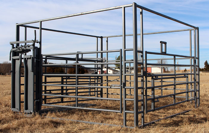 Photo 5 of 12 The Calving Pens For Our Mommas (marvelous Cattle Show Barns  #5)