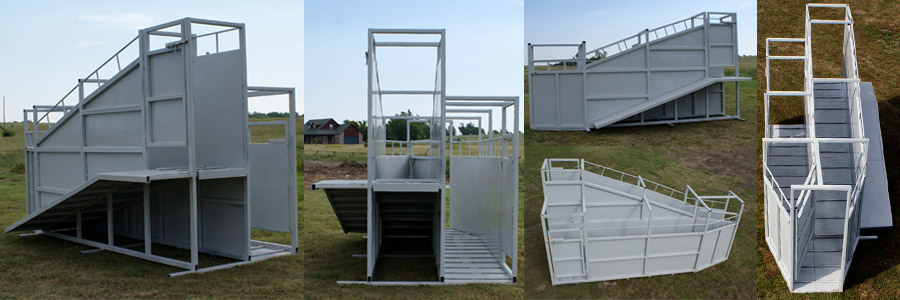 Dual Loading Chute for Cattle