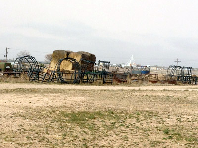 Hay Feeder Graveyard - Buy GoBob and Avoid This!