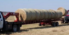 Red Ox  Hay Bale Trailer