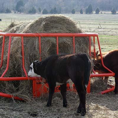GoBob Hay Conserver Feeder