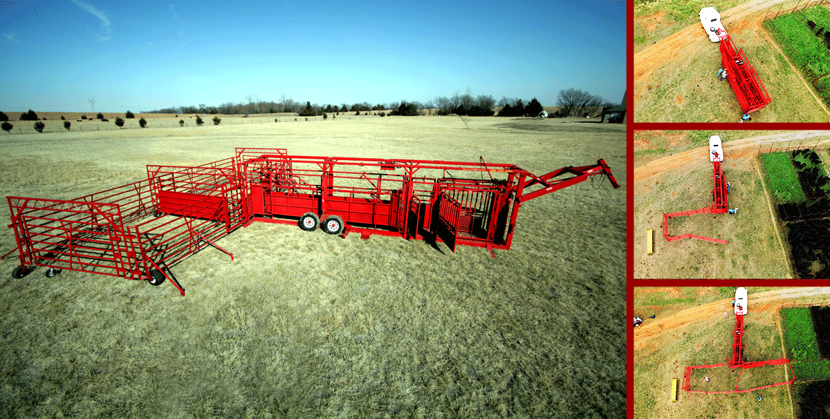 Cattle Flow Portable