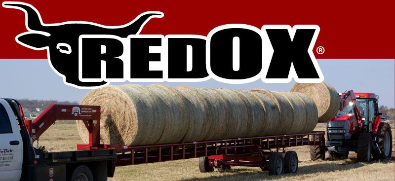 Red Ox Photo